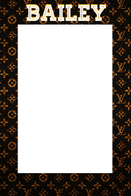 LV Party Prop Frame