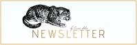 mail header newsletter template