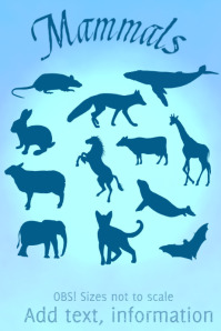 mammals of many kinds
