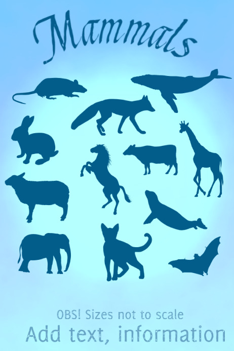 mammals of many kinds Poster template