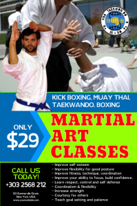 Martial Art Classes Poster