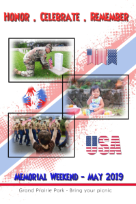 Memorial Day/patriotic/USA