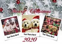Merry Christmas Card Postcard template