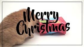 Merry Christmas Greeting Card Funny Cat Video