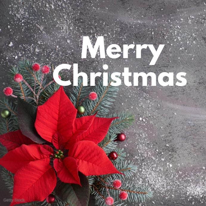 merry christmas greeting card fLOWER rED Instagram-opslag template