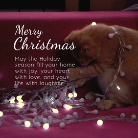 Merry Christmas Video Holiday Season Greeting