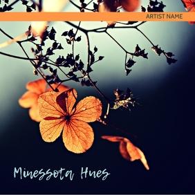 Minnesota Hues album art template