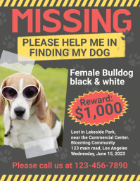 Missing Dog Flyer Folder (US Letter) template
