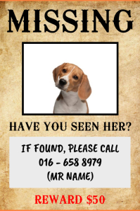 Missing Dog Or Pet Wanted Template Poster