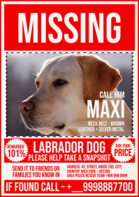 Missing Dog Poster Template A4