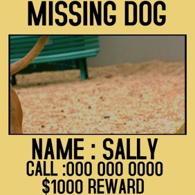 MISSING DOG SOCIAL MEDIA POST