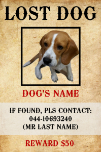 Missing Lost Dog Poster Template