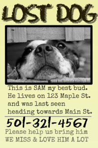 50+ Customizable Design Templates for Lost Animal | PosterMyWall