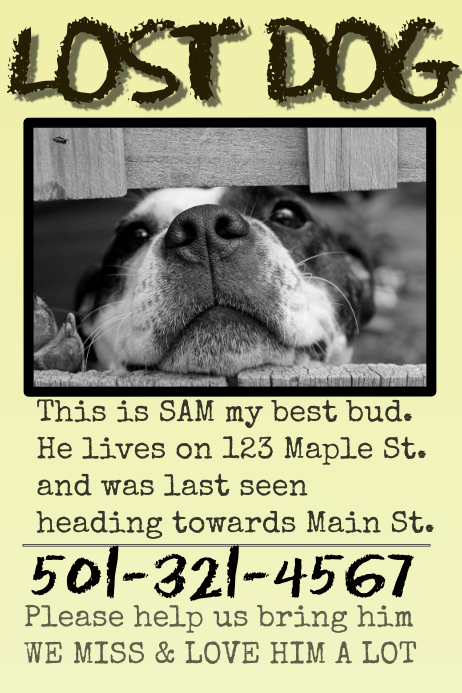 Template for lost pet poster - cafenews.info