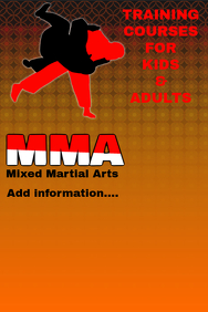 mma- Mixed martial arts - training courses - class