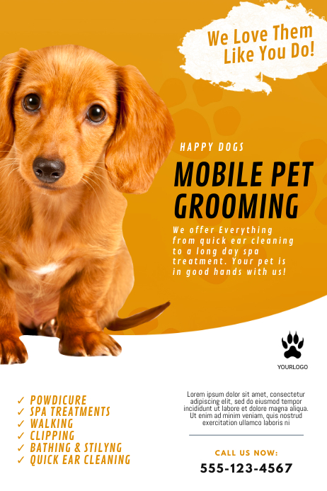 Mobile Pet Grooming Flyer Template Poster