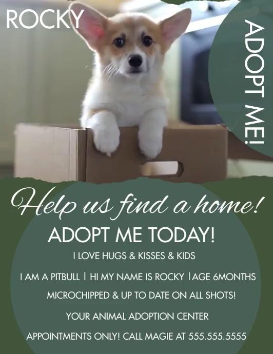 Modern Adoption Pet Video Flyer template