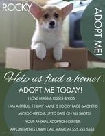 Modern Adoption Video Flyer template
