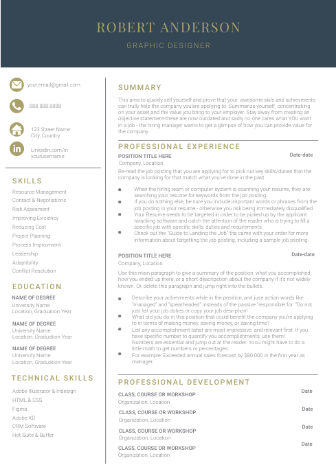 Modern Executive Resume Template A4