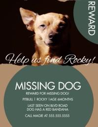 Modern Lost Dog Missing Dog Video Flyer Løbeseddel (US Letter) template