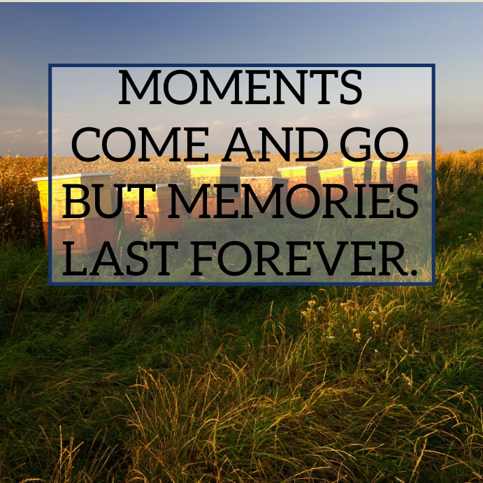 MOMENTS AND MEMORIES QUOTE TEMPLATE Instagram Post