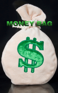 MONEY BAG BOOK TEMPLATE Sampul Buku