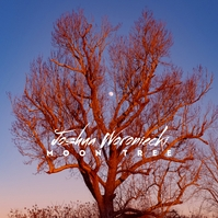 Moon Tree Web CD Cover Blue Sky Sampul Album template