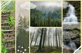 Mountains and Forests Nature Collage