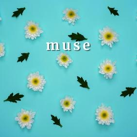 muse Album Art