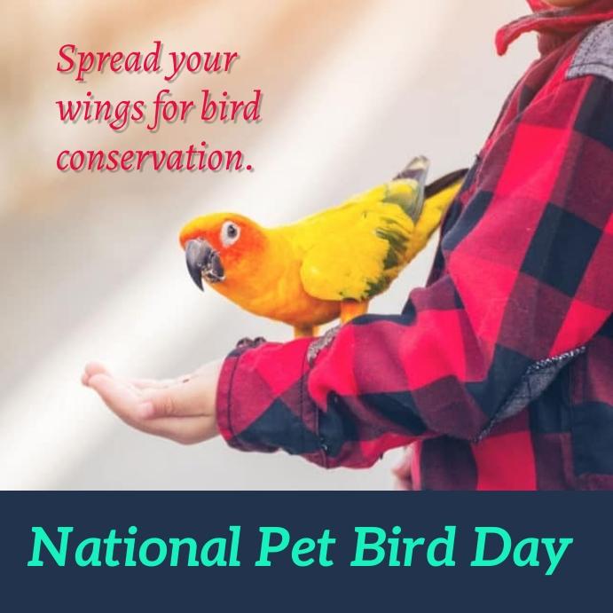 national pet bird day Instagram Post template