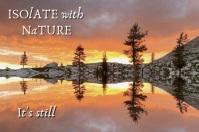 Nature is Still Open Text Slideshow Plakkaat template