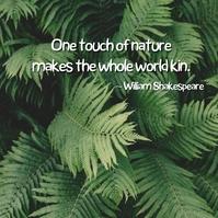 nature quote 1 Album Cover template