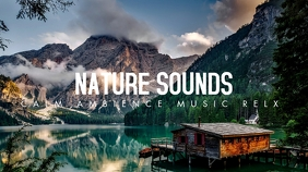 nature sounds calm ambience music relax