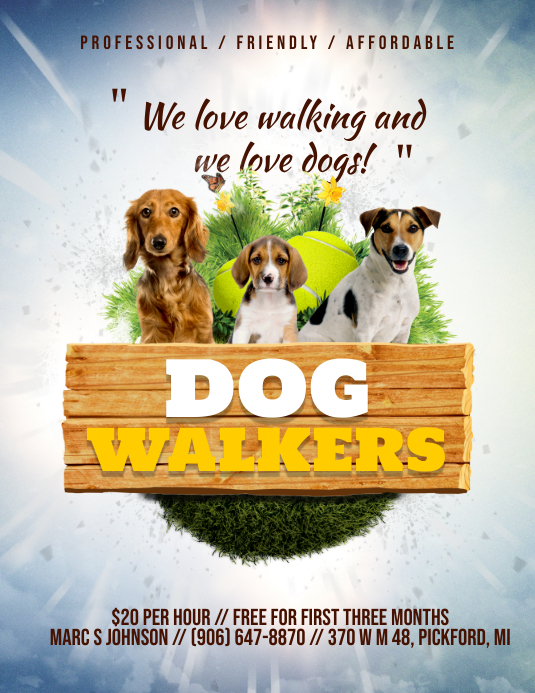 Neighbourhood Dog Walker Advert Flyer 传单(美国信函) template