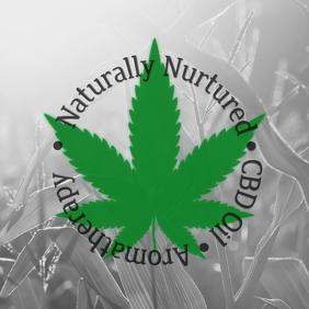 NN Company Logo