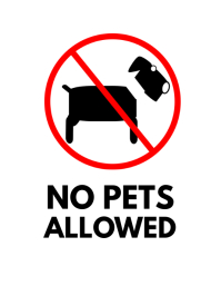 no pets sign flyer template