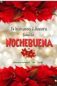 nochebuena/navidad/christmas/retail/store