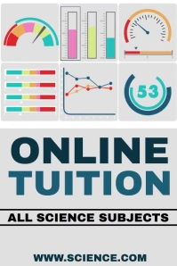Online Tuition Poster Template
