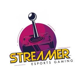 Online Video Game Streamer Logo