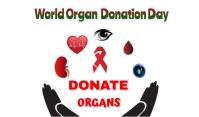 Organ Day Tag template