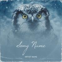 OWL Album cover design template Обложка альбома
