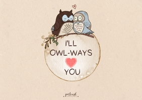 Owls Love Postcard