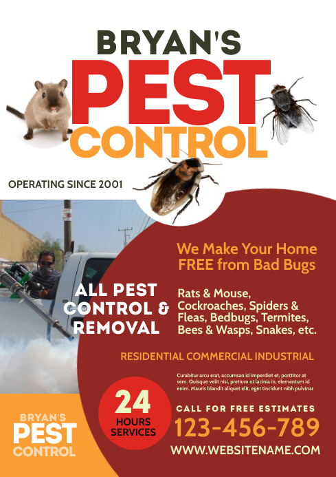 Pest Control Flyer A4 template