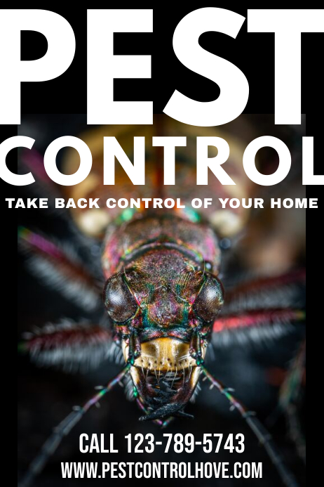 Pest Control Poster Template