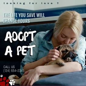 pet adoption ads