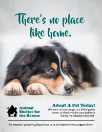 Pet Adoption Awareness Poster Template