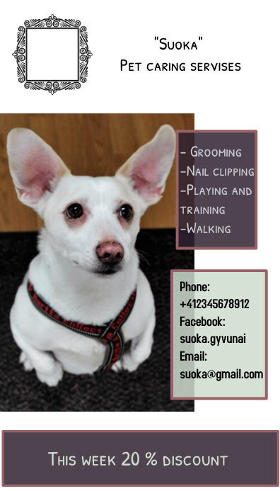 Pet caring discount flyer 名片 template