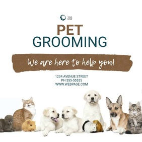 pet groomimg Service Video Design Template