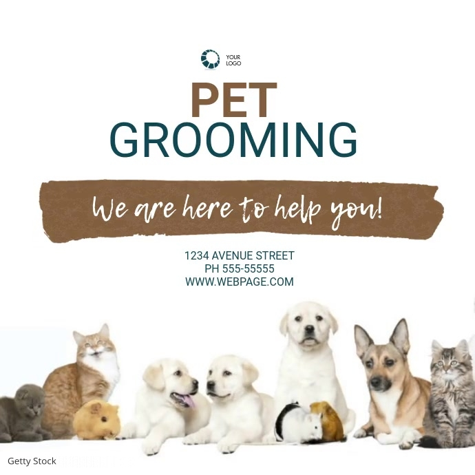 pet groomimg Service Video Design Template Square (1:1)