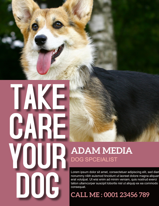Pet Grooming and Care Service Flyer template
